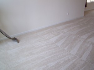Injoi Home Services is a metro Atlanta carpet cleaning service
